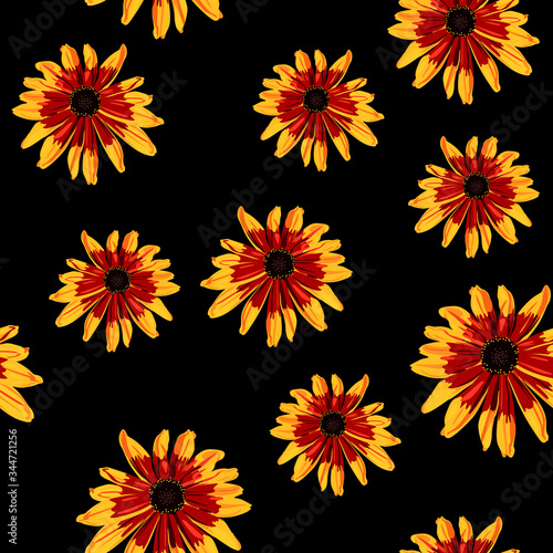 Seamless floral pattern with Black-Eyed Susan flowers Fototapet