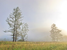 Fog Over The Mountain River Ka...