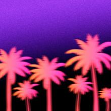 Palm Trees Silhouette Art Illustration