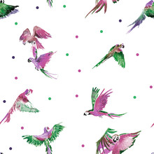 Set Of Colored Parrots. Assembled In A Seamless Pattern. Can Be Used As A Background, Printing On Clothes, On Fabric, On Postcards, Booklets, Menus