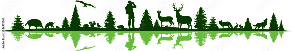 Fototapeta Landscape Nature Forest Animal Silhouette Vector