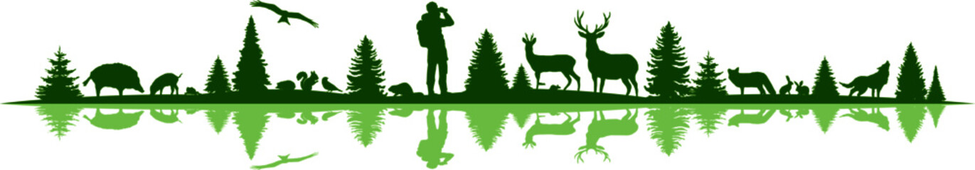 Landscape Nature Forest Animal Silhouette Vector