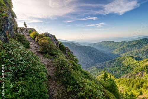 Summer evening at Charlies Bunion on the Appalachian Trail Wallpaper Mural