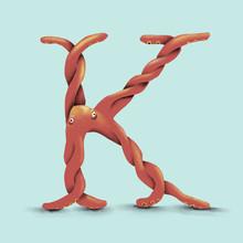Octopus - K
