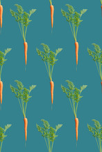 Carrot Infinite Pattern