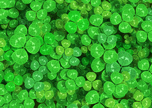Green Clover Background 3d Rendering
