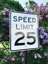 Stock Photo Of Speed Limit Sign Surrounded By Flowers