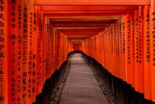 Walkway Under Orange Wooden Pi...