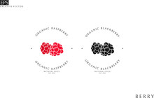 Natural Juice. Logo Template. Raspberry And Blackberry Juice