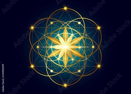 Photo Seed of life symbol Sacred Geometry