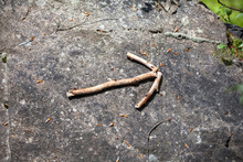 Wooden Stick Arrow At Forest M...