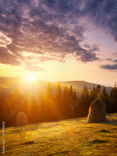Amazing sunrise in spring landscape