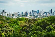 View Of Panama City From Metro...