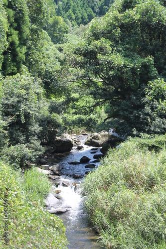 Photo A babbling brook in contryside  - 夏の小川 - 田舎の風景