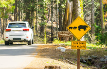 Bear Sign On The Road In Natio...