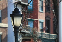 Brooklyn Streetlamp