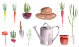 Hand drawn watercolor set of vegetables and garden tools