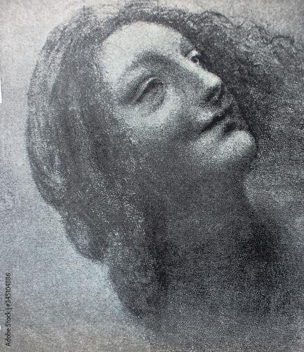 Fotografie, Tablou Etudes of young woman by Leonardo Da Vinci in a vintage book Leonard de Vinci, author A