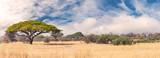 Fototapeta Sawanna - African landscape in the Hwange National Park, Zimbabwe
