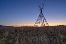Tepee Poles On The Stoney Indian Reserve At Morley, Alberta, Canada
