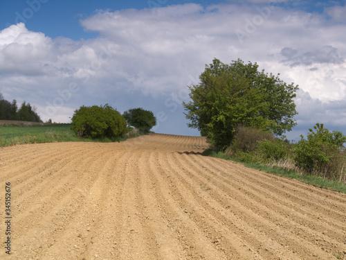 Fototapeta Rolnictwo -Wiosna zaorane pole obraz