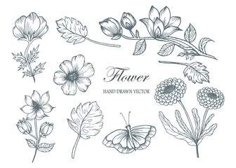 Sketch Floral Botany Collection. Flower drawings. Black and white with line art on white backgrounds. Hand Drawn Botanical Illustrations.Vector.1