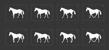 Horse Walk Cycle Animation. Fr...