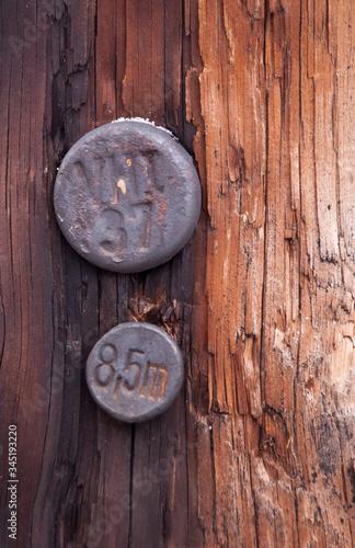 Obraz zbliżenie starych znaczników na słupie telefonicznym - fototapety do salonu