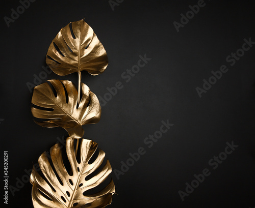Gold painted shiny minimal monstera leaves composition on abstract black background