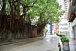 香港上環の街角