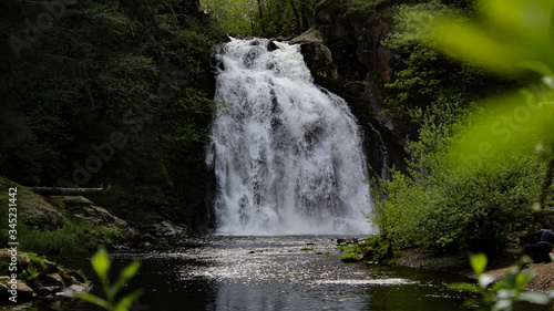 Fotografie, Obraz Young's River falls