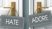 Adore Or Hate As A Choice In Life - Pictured As Words Hate, Adore On Doors To Show That Hate And Adore Are Different Options To Choose From, 3d Illustration