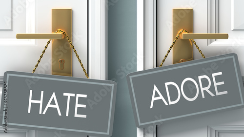 Photo adore or hate as a choice in life - pictured as words hate, adore on doors to sh