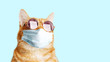 canvas print picture - Closeup portrait of ginger cat wearing sunglasses and protective medical mask isolated on light cyan. Copyspace.