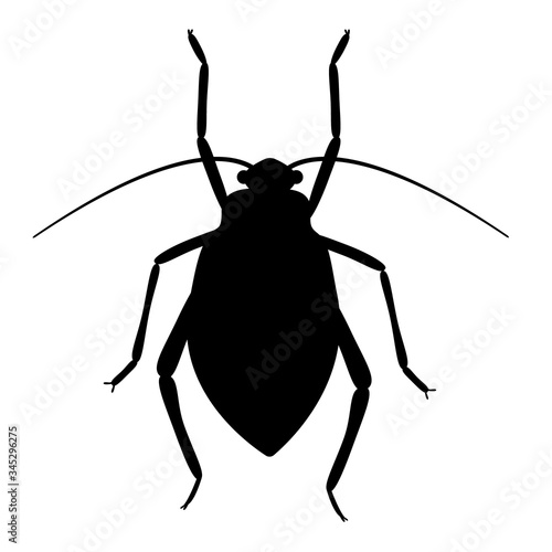 Aphids, greenfly, blackfly, aphis, plant-louse, insects, pest (vector, black con Fototapet