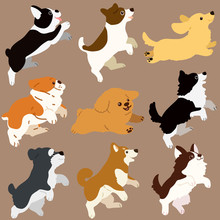 Set Of Flat Colored Dogs Jumpi...