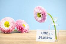 Gänseblümchen Wünschen Gute...