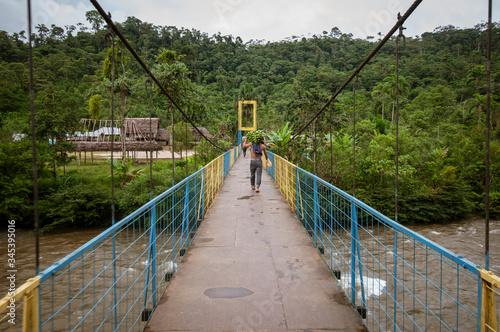 amazonia ecuatoriana puente movil Wallpaper Mural