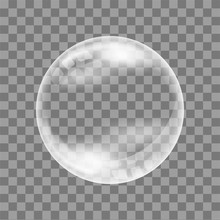 Realistic Soap Bubble. On A Tr...