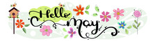 Hello May. MAY Month Vector Wi...