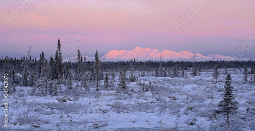 Платно Alpenglow on Mt. Spurr, Alaska
