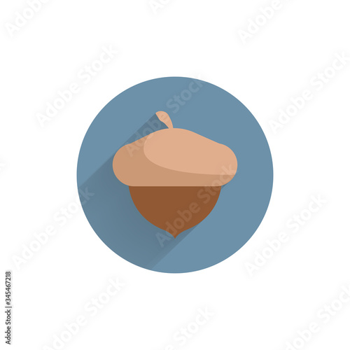 acorn colorful flat icon with long shadow. acorn flat icon Canvas Print