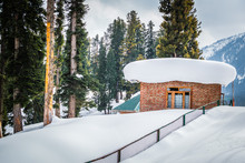 A Lodge Cabin In A Dense Fores...