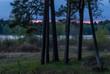Leinwandbild Motiv Dangerous, dramatic evening storm passing over the forest