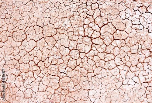 Fototapeta Seamless dry soil cracked texture background