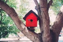 Red Birdhouse On Tree In Yard