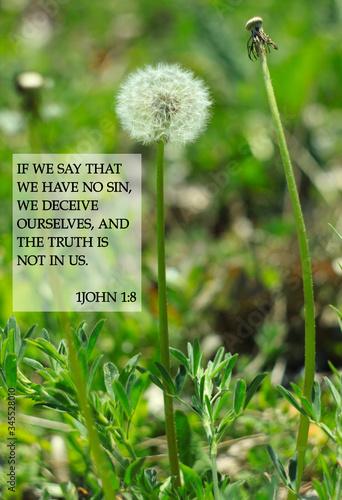 Bible quotes on dandelion flowers background Fototapeta