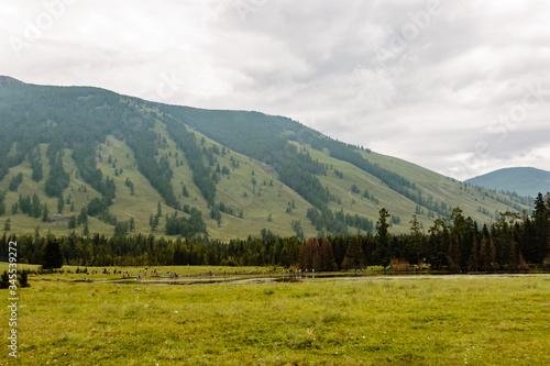 Fototapeta Scenic View Of Landscape Against Cloudy Sky obraz na płótnie