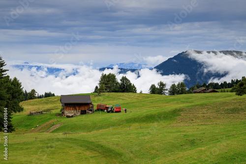 Canvastavla Alpe di Siusi, Trentino Alto Adige