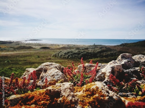 Scenic View Of Rocks By Sea Against Sky Canvas Print